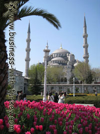 Spring in Istanbul photo album